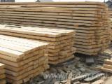 Nadelschnittholz, Besäumtes Holz Mongolische Waldkiefer Pinus Sylvestris - Mongolische Waldkiefer , Thermisch Behandelt - Thermoholz