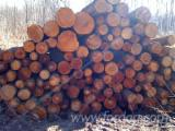 Firewood, Pellets And Residues - FIREWOOD LOGS