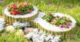 Vender Demarcação De Jardim Madeira Macia Européia Belorussia