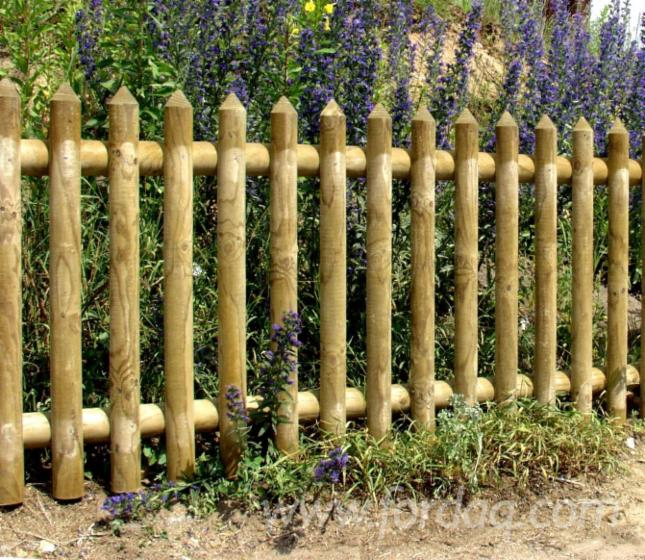 Pino legni rossi perimetro da giardino fsc - Pino nano da giardino ...