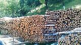 Firelogs - Pellets - Chips - Dust – Edgings For Sale - Beech Firewood/Woodlogs Cleaved