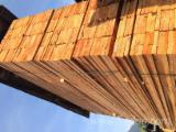 Nadelschnittholz, Besäumtes Holz Lärche Larix Spp. Zu Verkaufen - Lärche KD III-IV