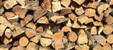 Buy Or Sell  Firewood Woodlogs Cleaved Romania - Firewood Cleaved - Not Cleaved, Firewood/Woodlogs Cleaved, All broad leaved specie