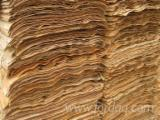 Rotary Cut Veneer - Eucalyptus Core Veneer for making Plywood