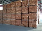 Romanian Beech Timber KD 20-22%, 25;38;50;60;70;80 mm thick