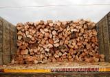 Ogrevno Drvo - Drvni Ostatci Drva Za Potpalu Oblice Cepane - Bukva Drva Za Potpalu/Oblice Cepane Rumunija