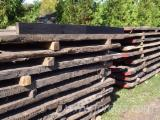 Hardwood  Logs For Sale - Polish Bog Oak, Black Oak