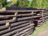 Madera Dura  Troncos - Troncos para Aserrar, Mooreiche, black Oak, czarny dąb, bog oak, Morta