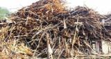 Ogrevno Drvo - Drvni Ostatci Okrajci Završeci - All Coniferous Okrajci/Završeci Rumunija