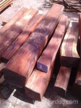 Tropical Wood  Unedged Timber - Flitches - Boules - Cocobolo Dalbergia Retusa boules