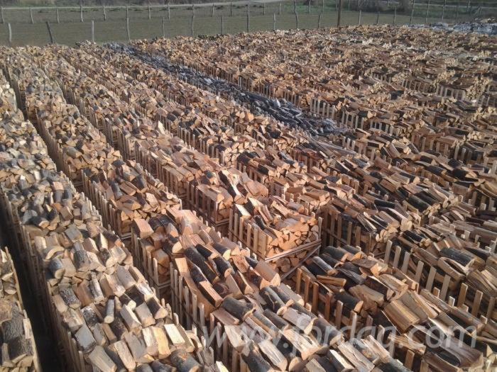 Beech-Firewood-Woodlogs