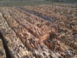 Firewood - Chips - Pellets Supplies - Beech  Firewood/Woodlogs Cleaved