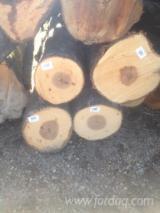 Gum  Hardwood Logs - Sweetgum (redgum, sapgum) veneer logs