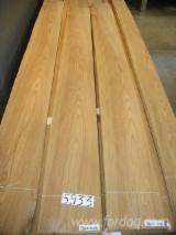 Sliced Veneer ISO-9000 - Natural Veneer, Olmo Americano, fiammato e rigato