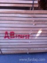 Hardwood  Sawn Timber - Lumber - Planed Timber FSC - we ara a company specialised in whitewood and beech wood exporting