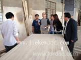We supply Rubberwood tables for Amazon Buildings