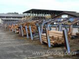 Woodworking Machinery Austria - Used 1992 Kesat Log Yard in Austria