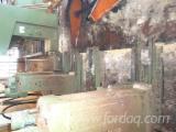 Machines, Ijzerwaren And Chemicaliën - Lintzaag Voor Verticaal Rondhout, Primultini , Gebruikt