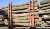 Firelogs - Pellets - Chips - Dust – Edgings For Sale - fag, carpen, stejar, paltin, frasin, jugastru, salcam, molid, brad, pin, larice Firewood/Woodlogs Not Cleaved in Ukraine