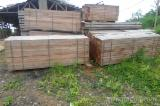 Iroko ,dabema ,sapel sawn timber avaialble