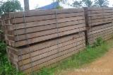 Dabema,bilinga,padouk sawn timber avaialable