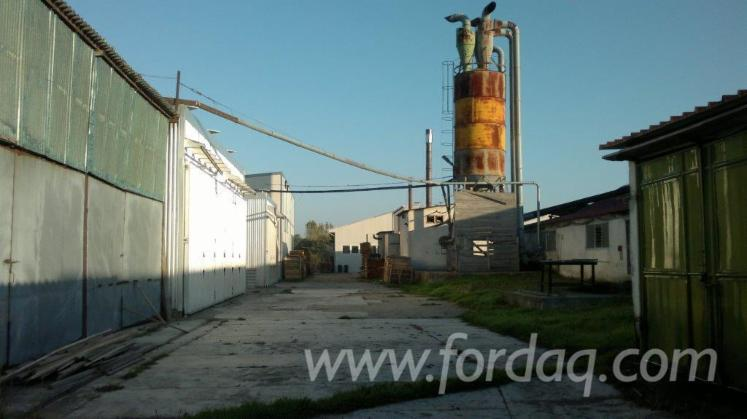 Production-plant-for-sale---production-of-elements---furniture---parquet