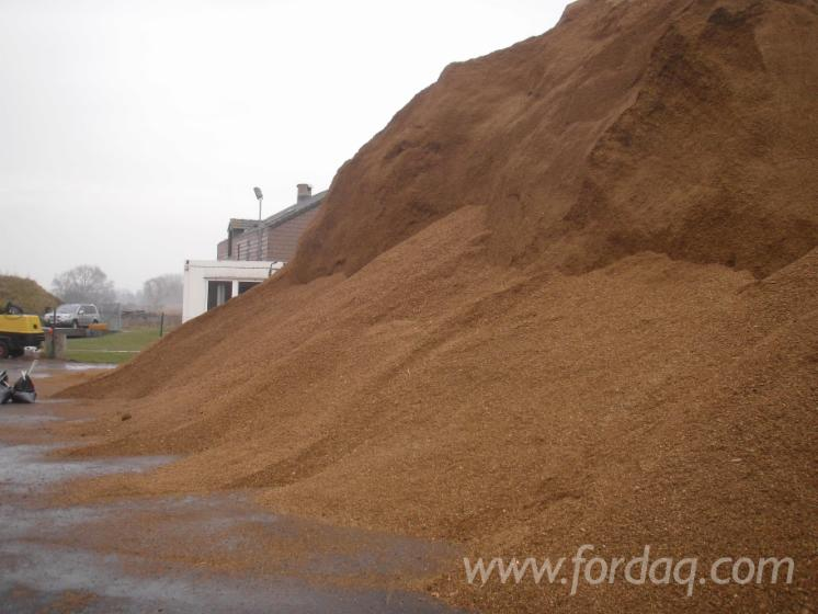 Wood-Chips---Bark---Off-Cuts---Sawdust---Shavings--Wood-Chips-From-Forest