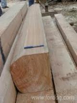 Hardwood  Unedged Timber - Flitches - Boules FSC - COIHUE WOOD