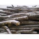 Firelogs - Pellets - Chips - Dust – Edgings - Wholesale Beech (Europe) Firewood/Woodlogs Not Cleaved in Romania