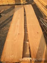 Laubholz  Blockware, Unbesäumtes Holz Serbien  - Beech boards, unedged 4000mm+, A quality