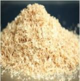 Firewood, Pellets And Residues - Pine Shavings Regular stable supply