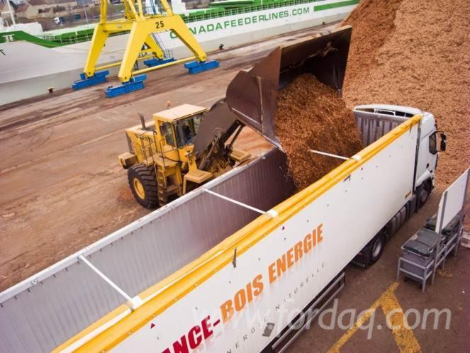 Wood-chips-from