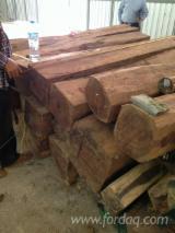 Padouk Hardwood Logs - Selling Padouk Round and Square Logs