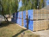 Hardwood - Square-Edged Sawn Timber - Lumber  - Fordaq Online market Lime tree planks (boards)