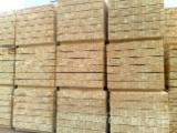 Sawn Timber - All species, 300.0 - 500.0 pieces per month