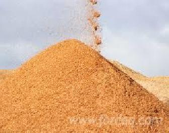 Wood-Chips---Bark---Off-Cuts---Sawdust---Shavings--Wood-Saw-Dust
