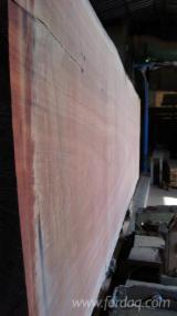 Tropical Wood  Sawn Timber - Lumber - Planed Timber - Kosipo (Omu, Penkwa, Heavy Sapelle), Gabon