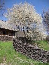 Négoce De Produits De Jardin En Bois -Fordaq - Vend Barrières - Ecrans Feuillus (Europe, Amérique Du Nord)