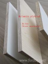 Melamine faced plywood and PVC edge banding