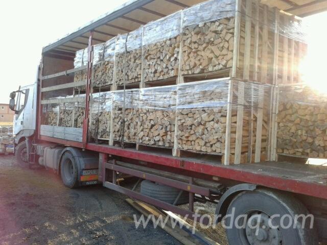 Brennholz--reine-Buche