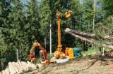 New MM Forsttechnik Syncro- Wanderfalke Mobile Cable Crane Italy