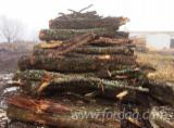 Firelogs - Pellets - Chips - Dust – Edgings Oak European - Firewood Cleaved - Not Cleaved, Firewood/Woodlogs Not Cleaved, Oak (European)