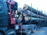 Road Freight, 400 m3 per month
