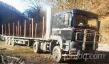 null - Kamion Za Prevoz Dužih Stabala MAN Polovna 2004 Rumunija