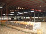Entreprise À Vendre Laos - Vend Production De Parquet Laos