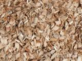 Wood chips without bark / Pine