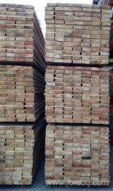 Răşinoase  Buşteni - Bustean de gater, Larice siberiană