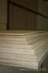 BIRCH PLYWOOD PRODUCERS