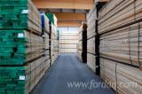 Planks (boards) , Poplar - Tulipwood (American Yellow Poplar)