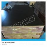 Plywood Supplies Film Faced Plywood (Black Film), black film or brown film